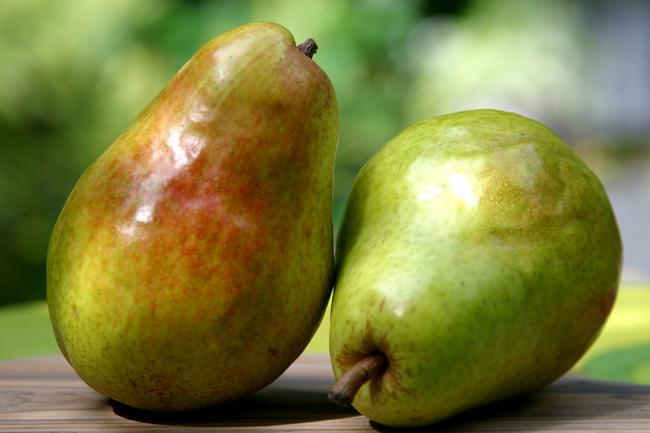 Pear Cardamom Cake